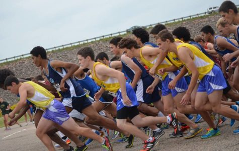 Willing to Improve: Wheat Ridge Cross Country Comes Back