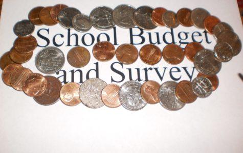 School Survey Generates Ideas About School Budgets Changes