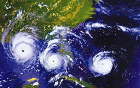 Hurricanes become more common because of Global Warming?