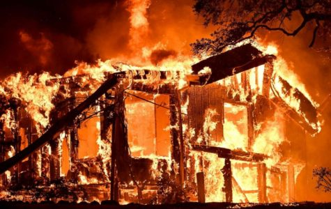 Northern California Wildfires Ravage Communities