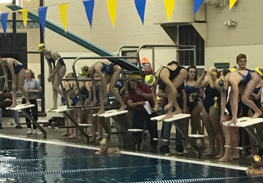Girls Swim Team Exceeding Expectations for New Season