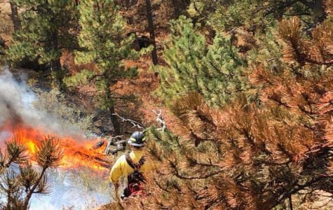 Firefighters battling Horsetooth fire near Fort Collins