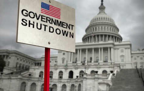 Government Open Until February 15