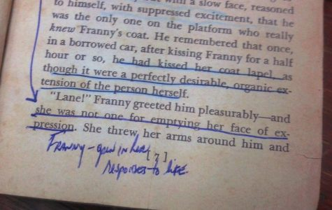 These are notes in a used copy of Franny and Zoey by J.D. Salinger.