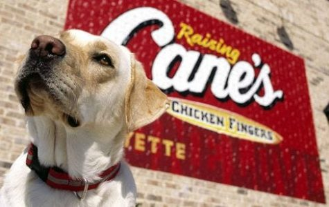 Raising Cane's Chicken Fingers - The Place That Fills You Up With Love