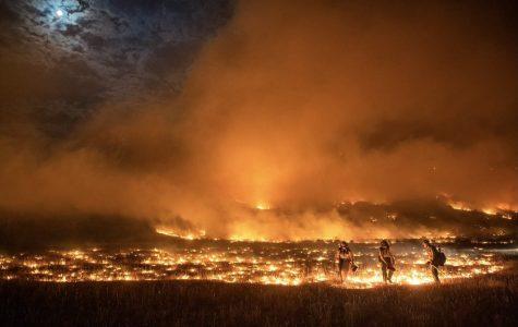 Pine Gulch Fire in western Colorado