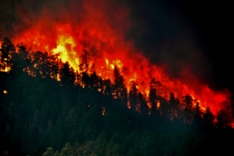 A Historical Wildfire Year In Colorado